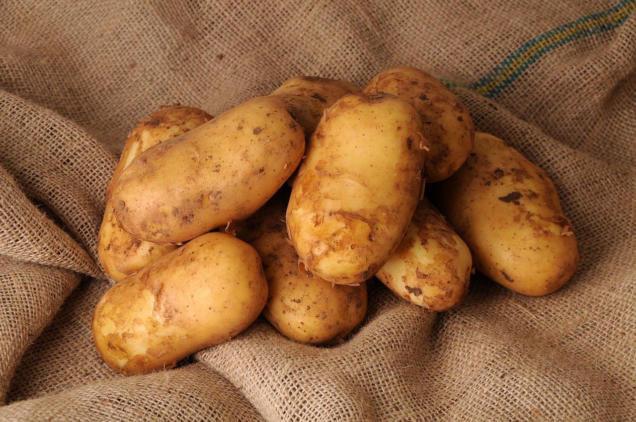 На Львівщині планують збудувати завод з переробки картоплі