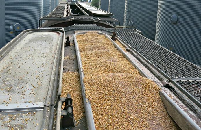Укрзалізниця відзвітувала про обсяги перевезення зерна в 2020 році