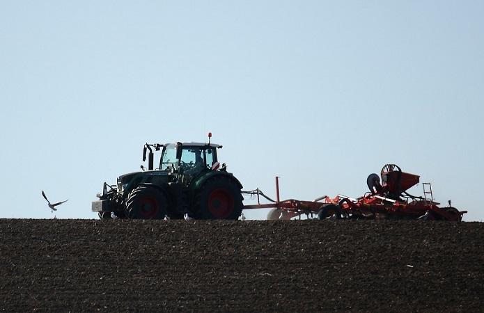 Українські аграрії засіяли понад 60% ріпаку під урожай-2021