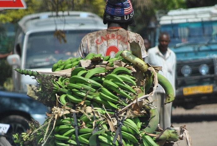 Експортувати до Африки складно. Виграє той, хто подолає всі перепони