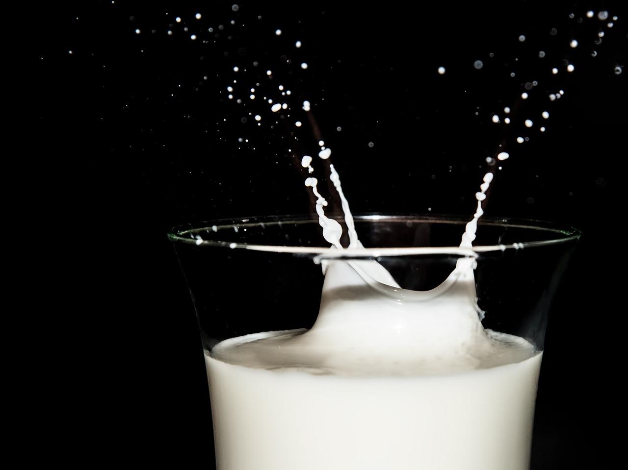 З початку року середній надій на корову на підприємствах зріс на 8,5%