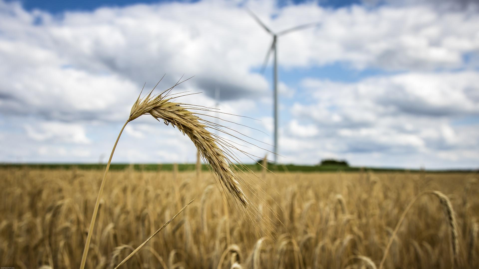 Аграрії закликають президента підписати закон щодо зниження ставки ПДВ