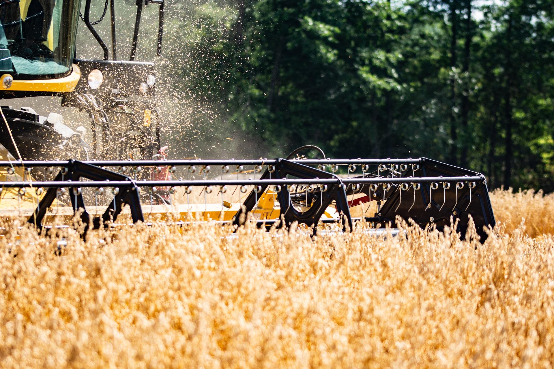 В Україні аграрії зібрали 83% зерна