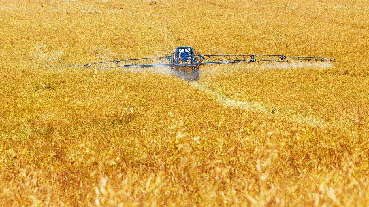 Запуск ринку землі в Україні матиме позитивні наслідки для усього світу — Лещенко