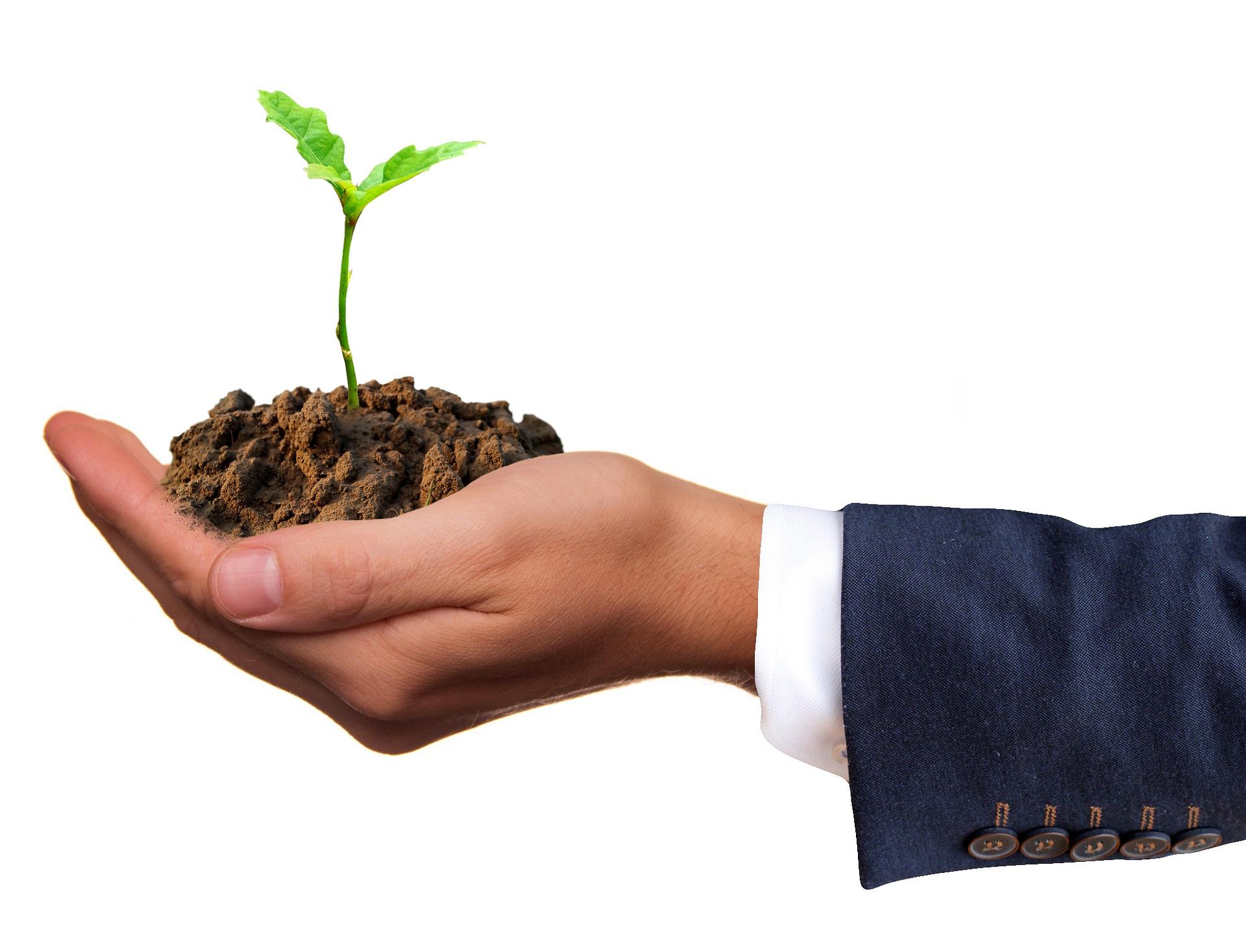 В Україні створили Керівний комітет з управління земельними відносинами