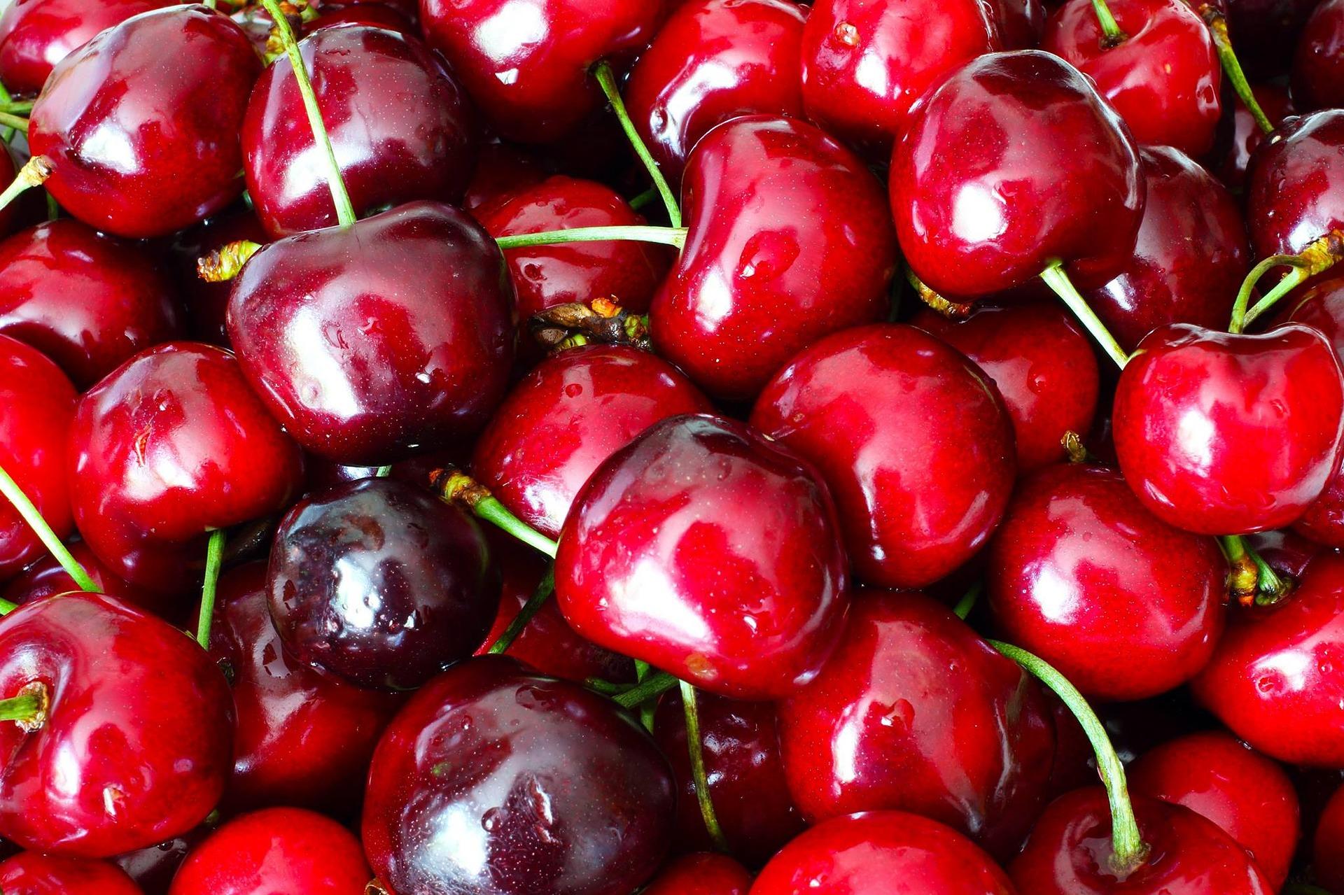 Україна посідає друге місце у світі з виробництва черешень
