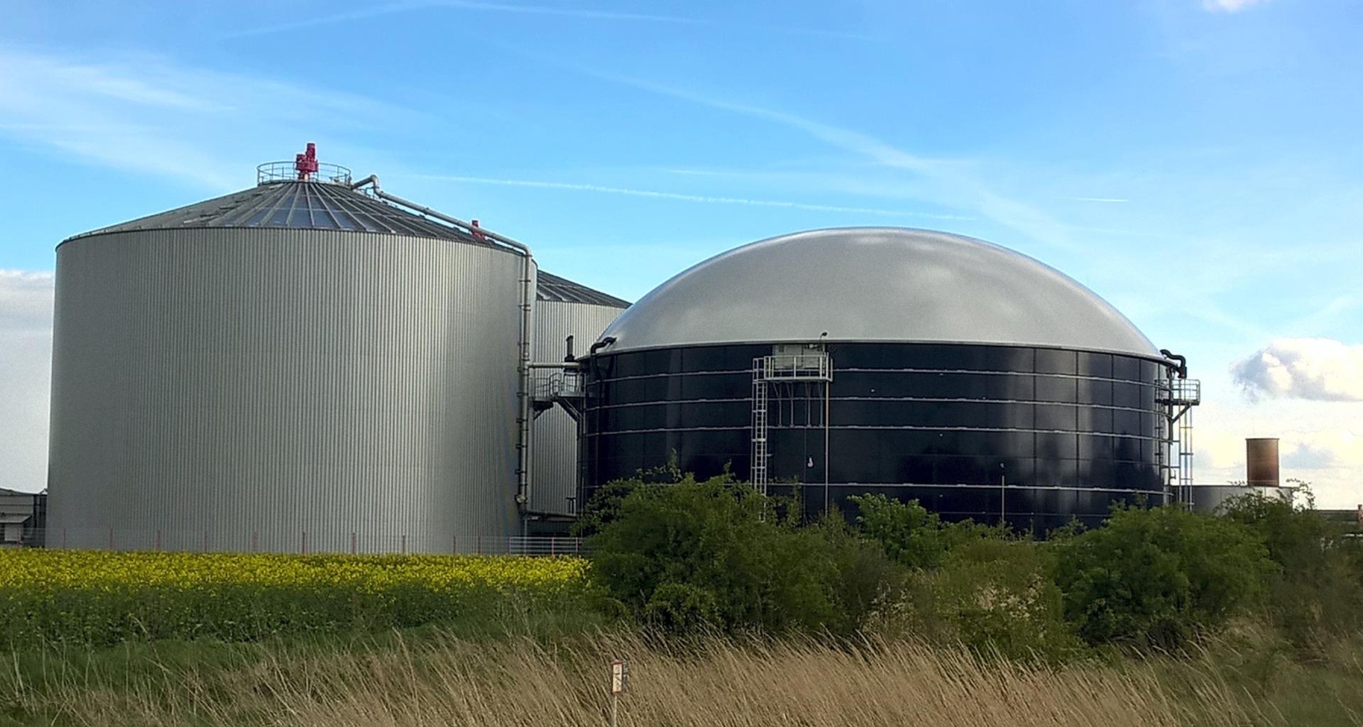 В Україні виробництво електроенергії з біомаси і біогазу зросло на 16%