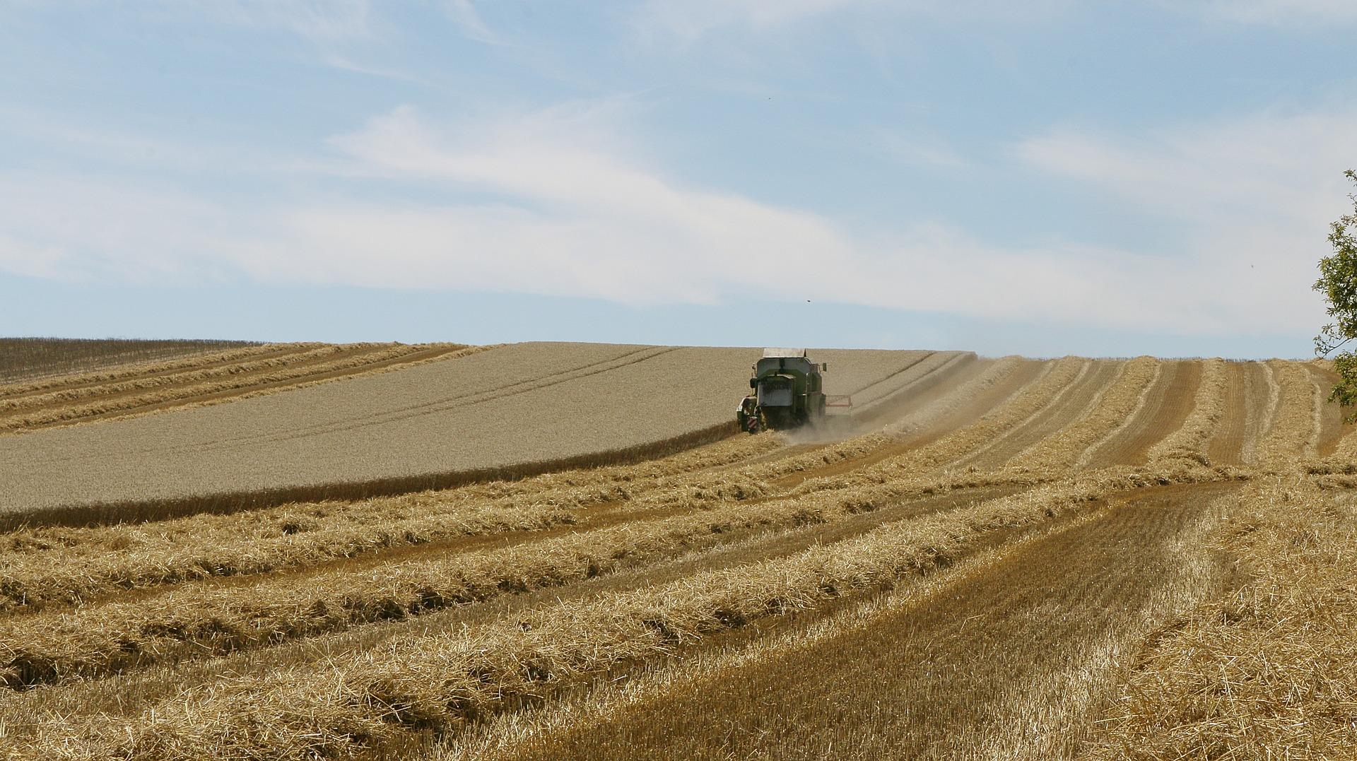 В Україні зібрали перший мільйон тонн зерна