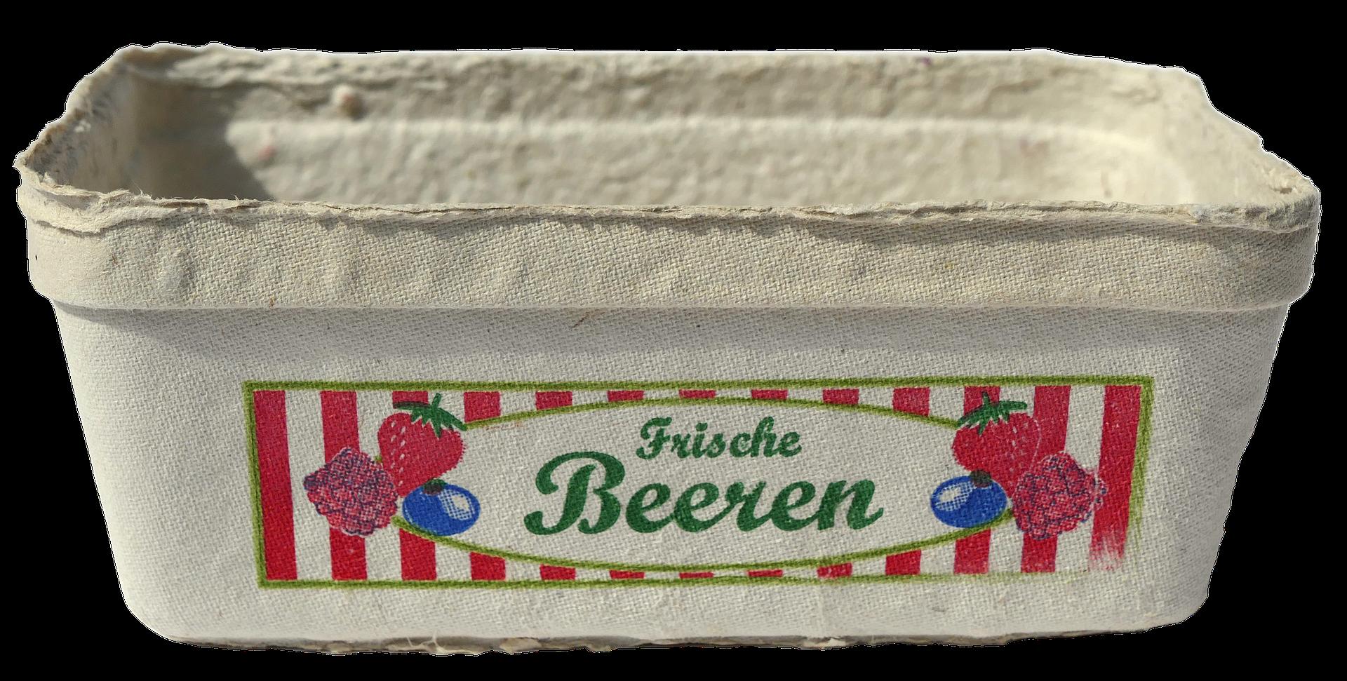 На Запоріжжі запустили нову лінію з виготовлення паперової упаковки для фруктів