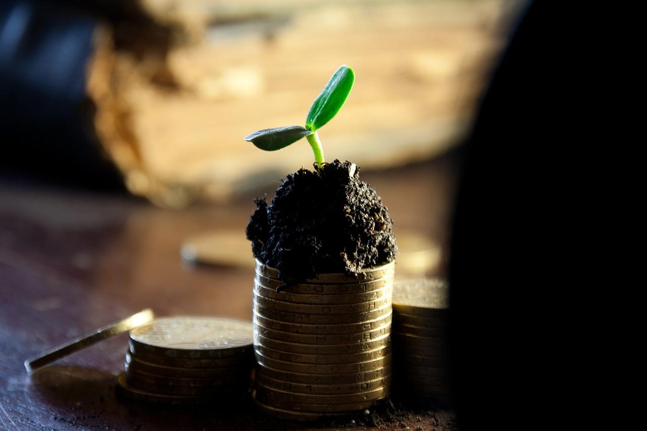 Продаж зерна нового урожаю матиме позитивний вплив на укріплення гривні — Гелетій