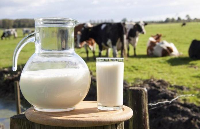 Українські молочники захищатимуться від зростаючого імпорту