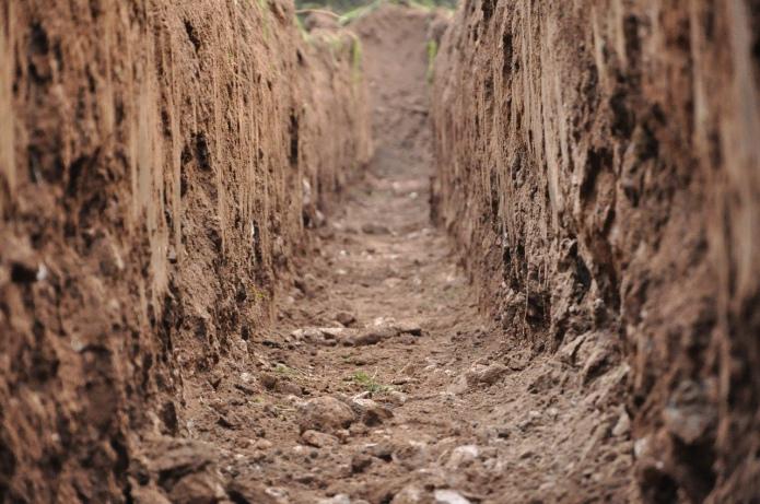 Агроном: В Україні відсутній контроль за станом грунтів