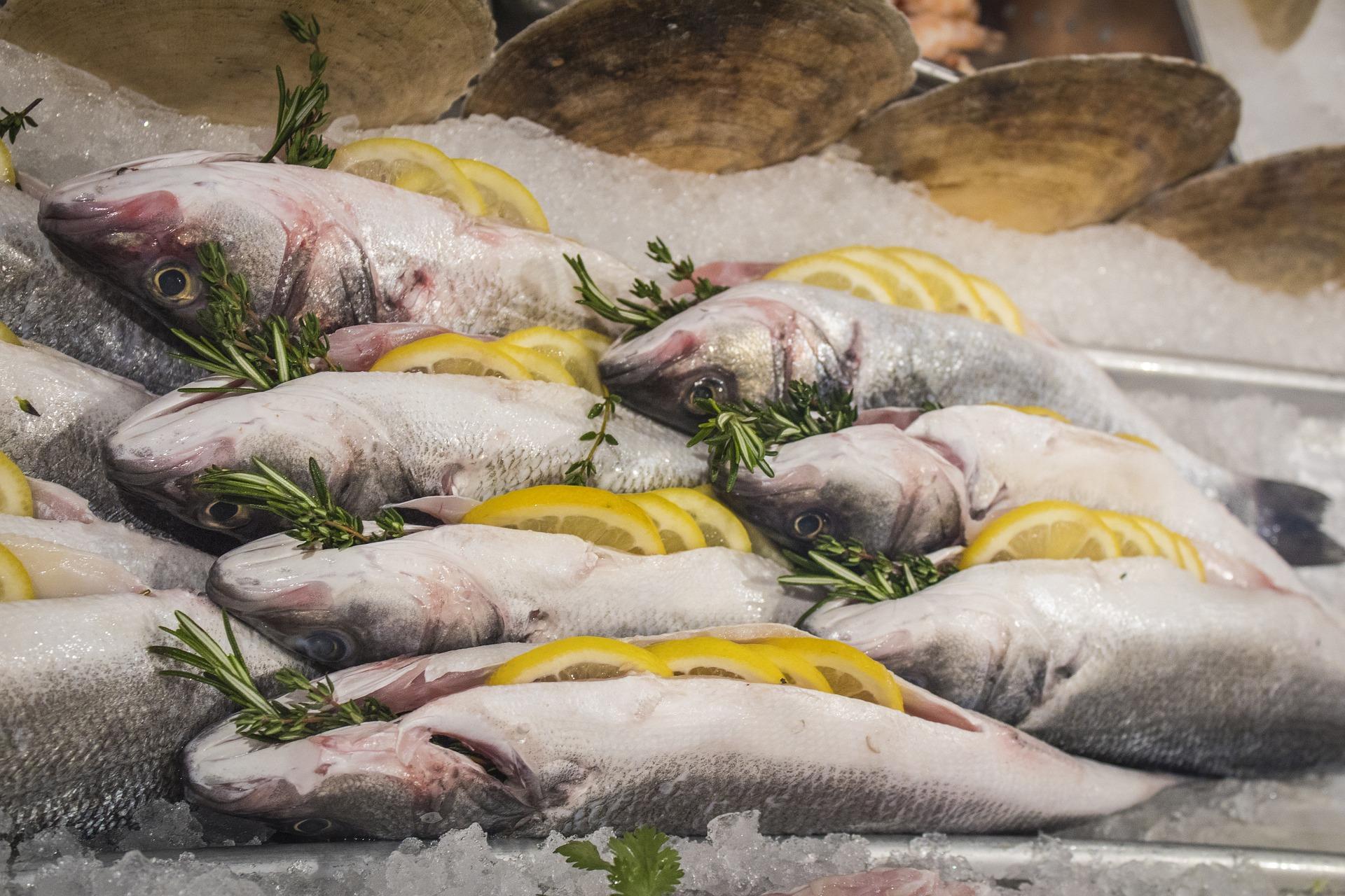 На Київщині продають рибний завод за 15,2 млн гривень